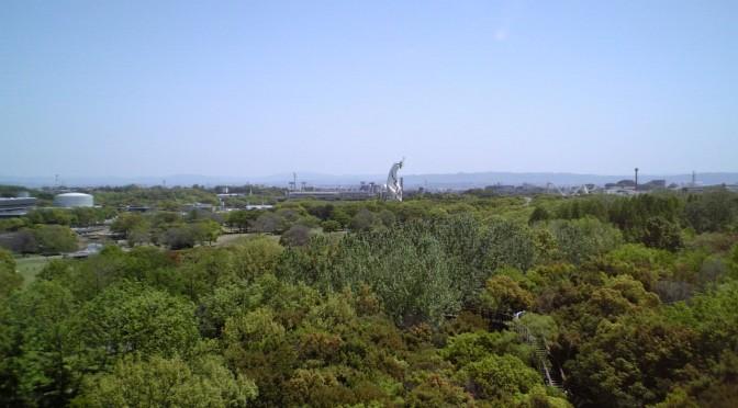 万博公園 木登りタワーからのながめ