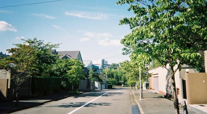 緑豊富な閑静な住宅街