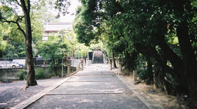 山田伊射奈岐神社の参道